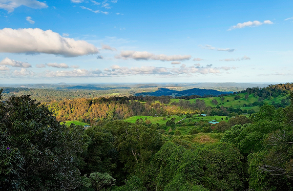 SUNRISE AT TREETOPS MONTVILLE MALENY WEDDING VENUE